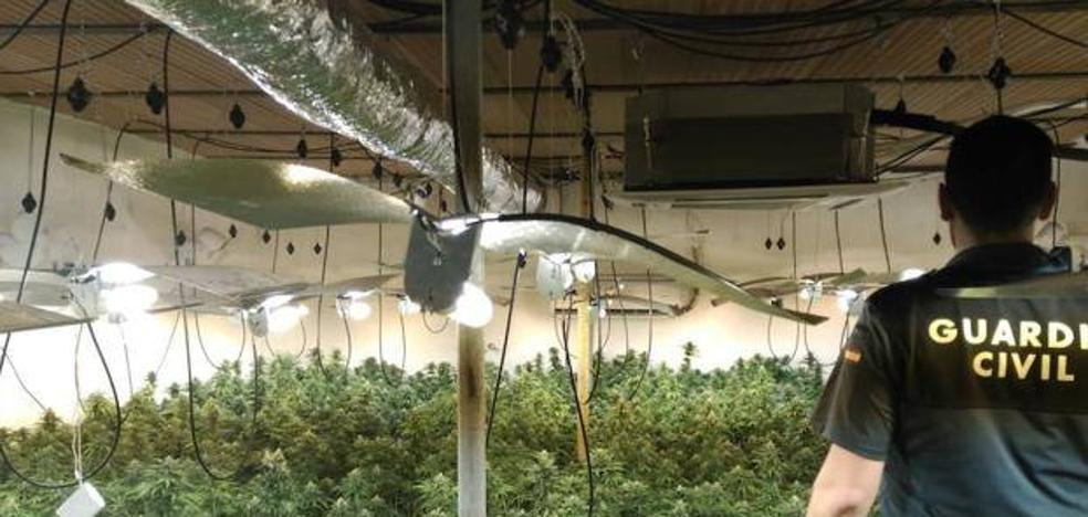 Las plantaciones de marihuana y los enganches ilegales están detrás de los cortes de luz en Berja