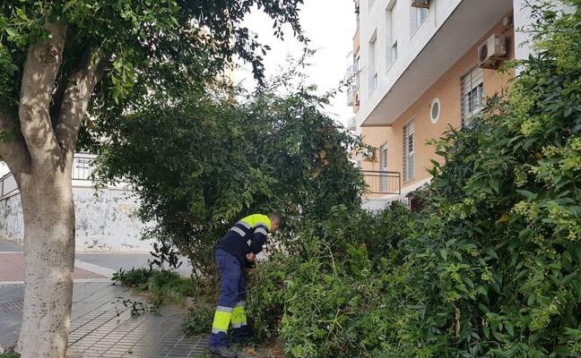 Adra dobla el personal para arreglar los jardines