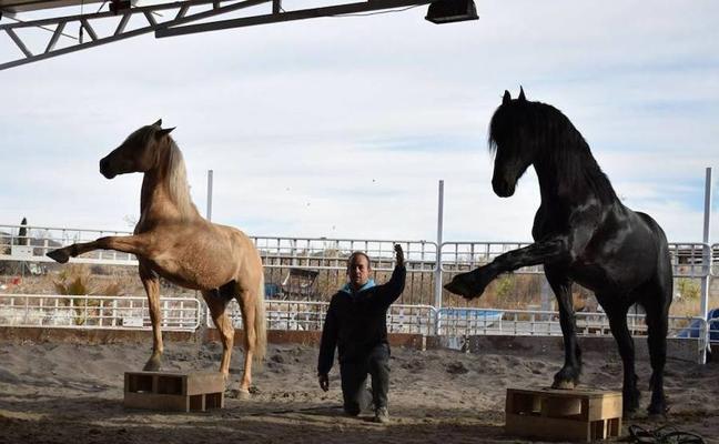 El domador de caballos Toño Serrano imparte un curso en Adra