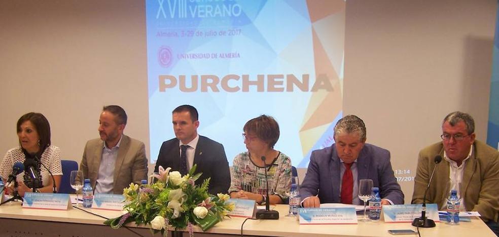 Purchena debate los cambios legislativos en los sistemas de protección de menores