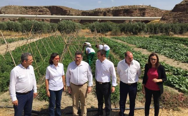 Menores que cumplen medidas judiciales en Purchena se forman en la agricultura con un programa de la Junta