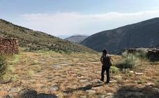 La Junta inicia el Plan de Gestión Integral (PGI) de los montes públicos de Sierra Filabres