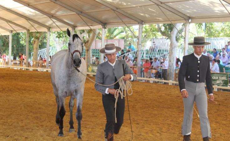 Un referente para Andújar y Jaén