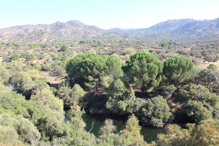 La asociación Ameco reclama las aperturas de las vías pecuarias del parque natural Sierra de Andújar