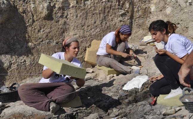 Promueven la excavación en un yacimiento de Baza con cuatro millones de años de antigüedad