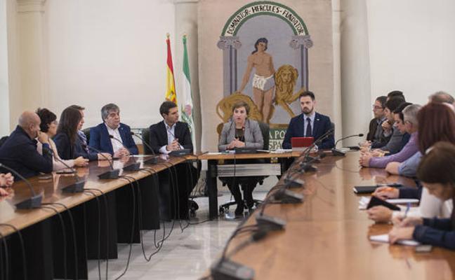 55 ayuntamientos, Diputación y Junta piden al Gobierno de España la línea eléctrica Caparacena-Baza-La Ribina
