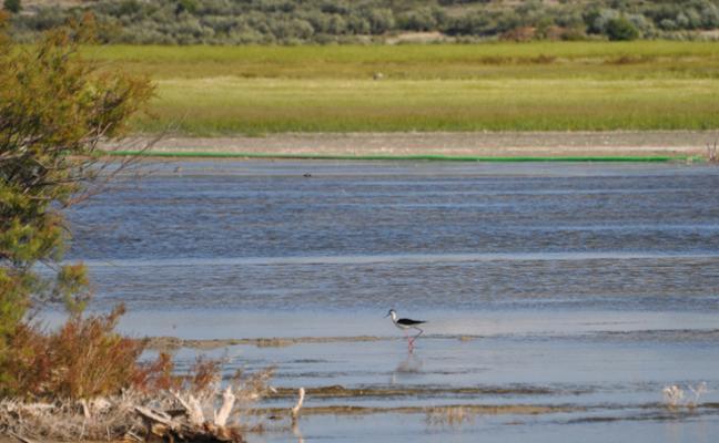 El Humedal del Baíco ya está incluido en el Inventario Andaluz de Humedales