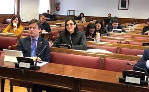 """El PP critica que el PSOE traslade al Senado """"el debate sobre la línea 400 Kv"""""""