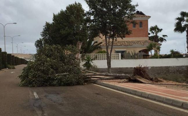 Varios tornados ocasionan destrozos en El Ejido