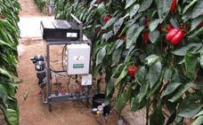 Agrícola Vasan reúne al sector para hablar de agua y subtropicales