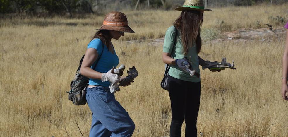 Últimos días para inscribirse en el curso de Paleontología del Centro Mediterráneo de la UGR