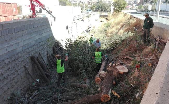 El Ayuntamiento realiza una actuación de limpieza en la Rambla Almorejo