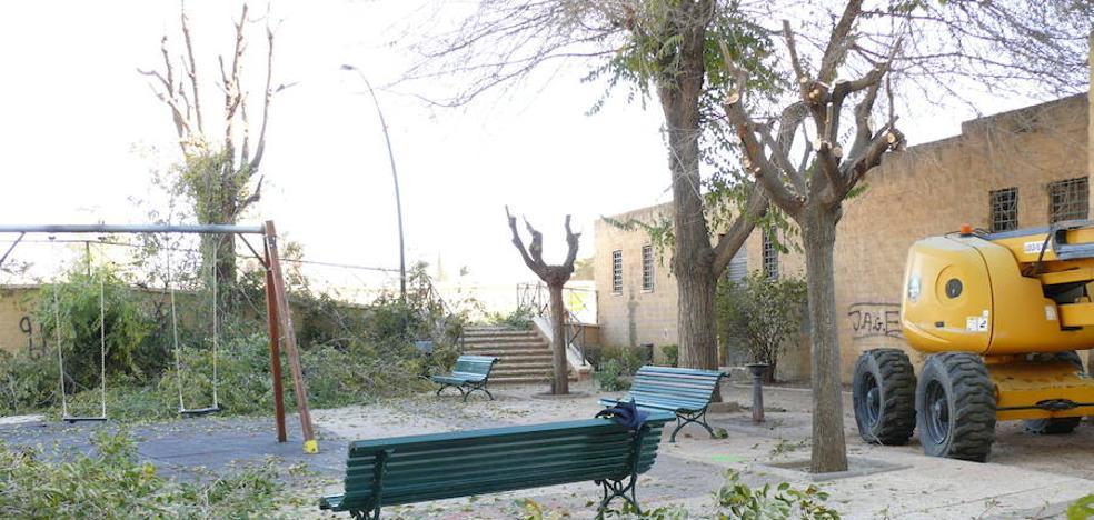 El Ayuntamiento realiza trabajos de poda en el parque municipal