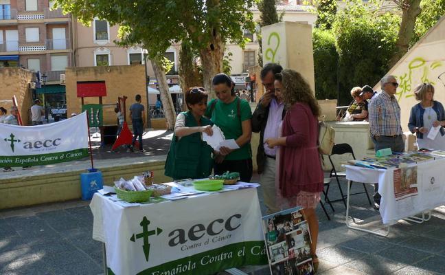 La concejalía de Participación Ciudadana actualiza su base de datos de asociaciones
