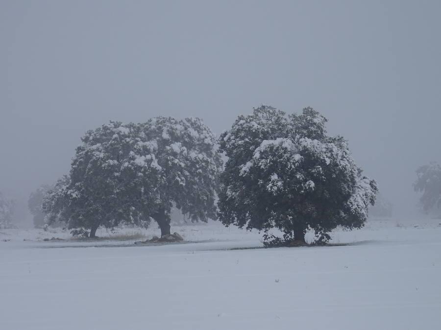 Gorafe, un pueblo bajo la nieve