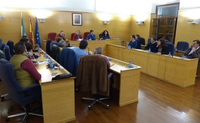 La alcaldesa de Guadix pierde la cuestión de confianza para aprobar las cuentas