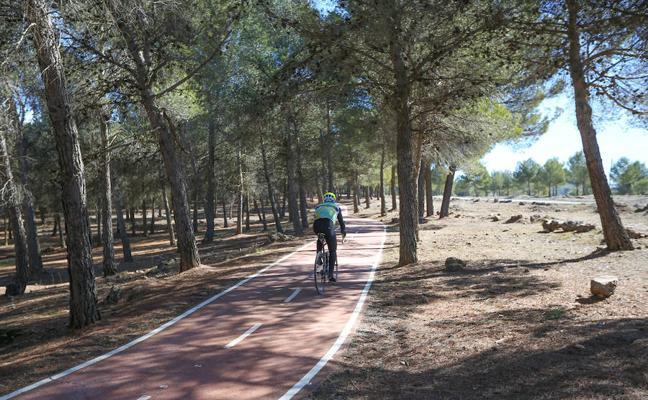 Un ciclista recibirá 45.000 euros por caerle encima un árbol talado en Cumbres Verdes