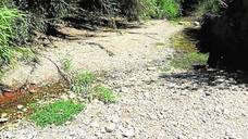 Cibercampaña para salvar el río Aguas de su desaparición