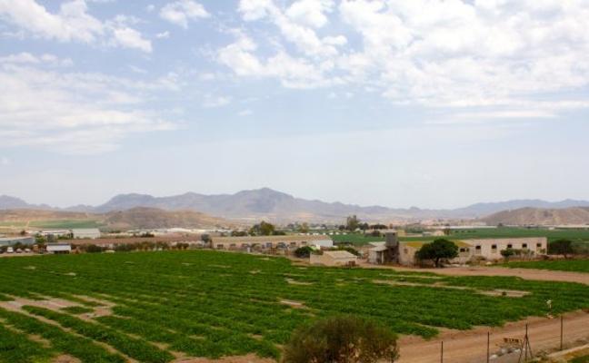 Más de 19.000 hectáreas del Levante se quedan sin agua por el 'cierre' del Negratín