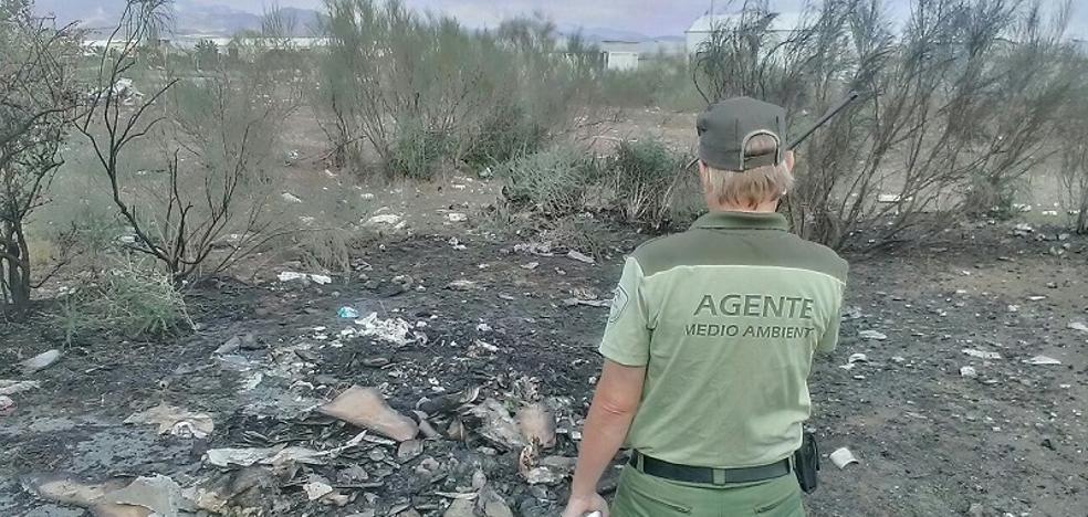 La Junta vigila la quema de residuos agrícolas en las hogueras de San Antón