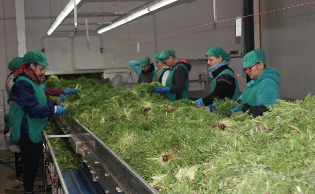 Cuadraspania amplia sus instalaciones gracias al Programa de Desarrollo Rural