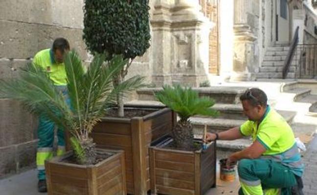 El taller de empleo formará a 15 especialistas en jardinería