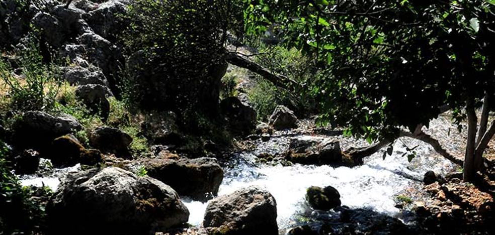 La Junta declarará monumento natural el Nacimiento de Riofrío