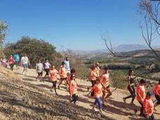 Más de 250 corredores participan en la VII Rústica Trail Race de Huétor Tájar