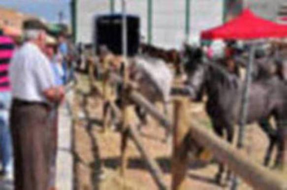 Salar celebra mañana 181 años de su Real Feria de Ganado