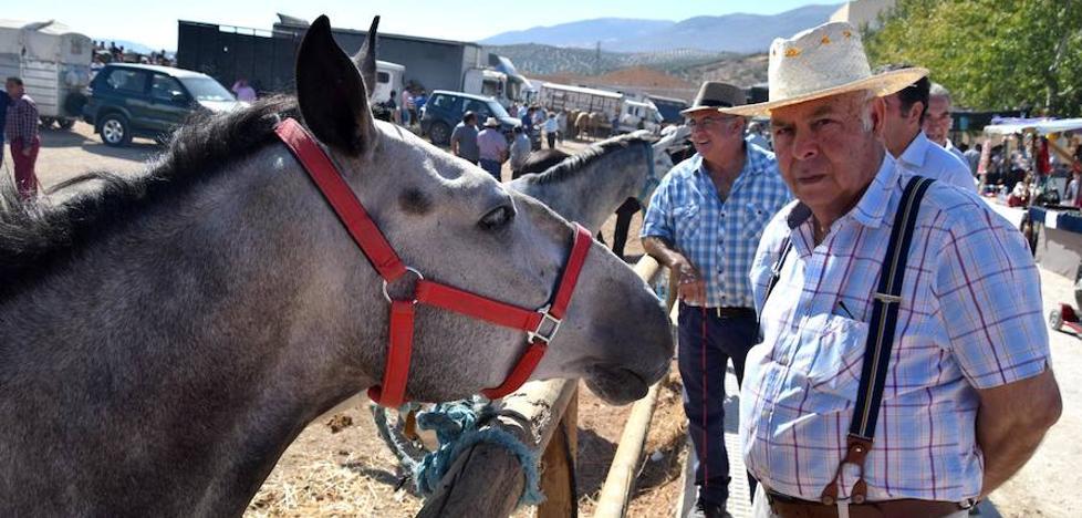 La era de Salar reúne más de 100 cabezas de ganado en su Real Feria
