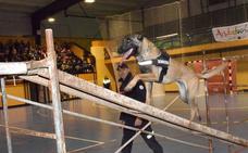 Loja muestra la labor de las unidades caninas en los cuerpos de Seguridad