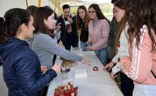 Más de 400 jóvenes se reúnen en Loja para mejorar sus habilidades de cara a la edad adulta