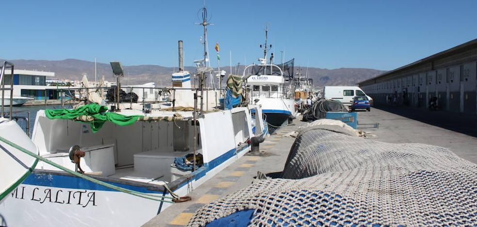 Todos los grupos municipales piden más cuotas para pesca artesanal del atún rojo