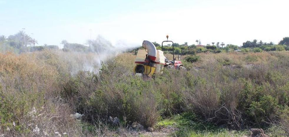El Ayuntamiento refuerza la lucha contra los mosquitos con un servicio externo