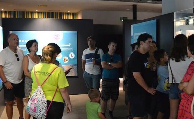 Los escolares confirman el éxito del Aula del Mar, que llegará a las 15.000 visitas este año