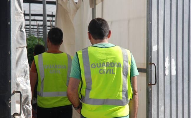 Un detenido por presunto robo con fuerza en un invernadero de Roquetas del Mar