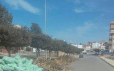 UPYD denuncia la acumulación de restos de poda en la calle Atocha