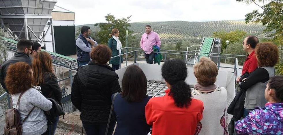 Buena respuesta al programa de visitas a almazaras promovido por el Centro Olivar y Aceite