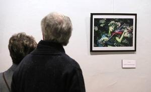 La Asociación Fotográfica Gran Angular celebra su tercera exposición anual