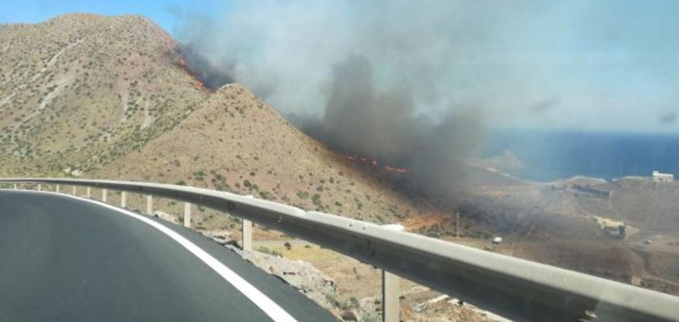 Una colilla mal apagada podría estar detrás del incendio en Cala Rajá