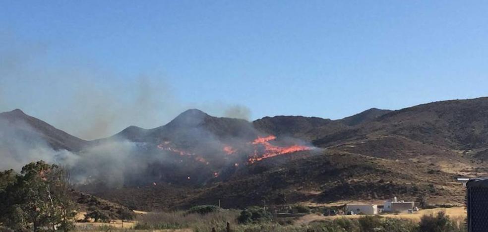 Tratan de frenar el avance de un incendio en San José