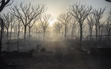 El fuego en el entorno de Doñana afecta a casi 8.500 hectáreas