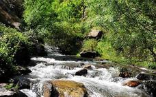Mañana se inicia la restauración de cuencas altas de Genil y Guadiana Menor