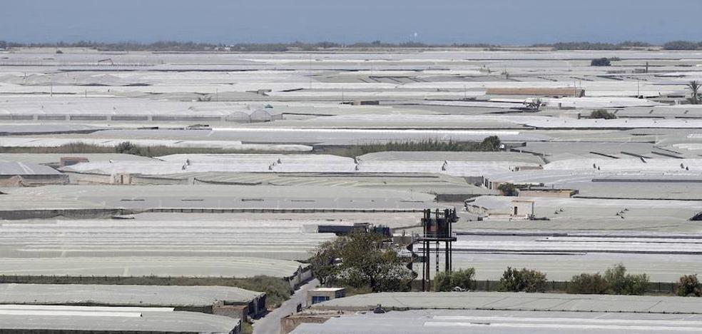 """Asaja urge a la Junta a resolver los """"miles de expedientes"""" para la modernización de los invernaderos"""
