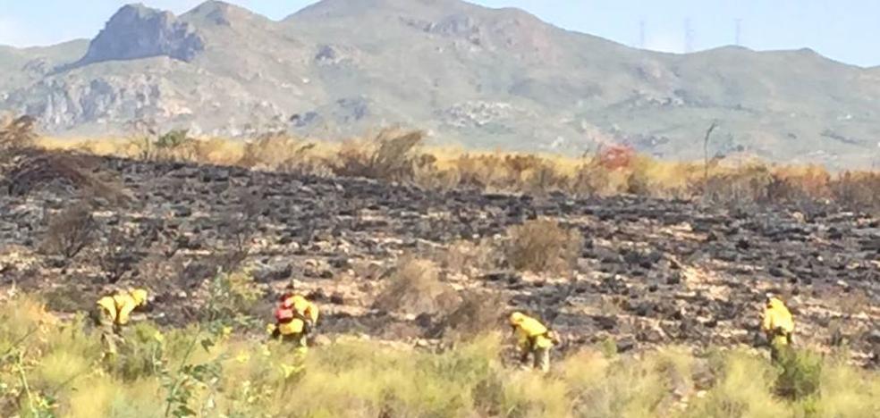 Controlado el incendio forestal de este sábado en el paraje Cortijo Grande de Turre