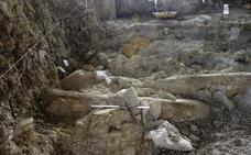 Hallan en Orce los mamuts de Granada de hace 1,5 millones de años