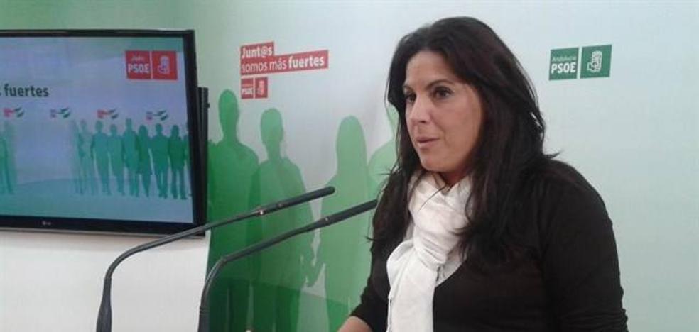 """El PSOE urge al PP a intervenir en """"el escandaloso caso de transfuguismo"""" en el Ayuntamiento de Jaén"""