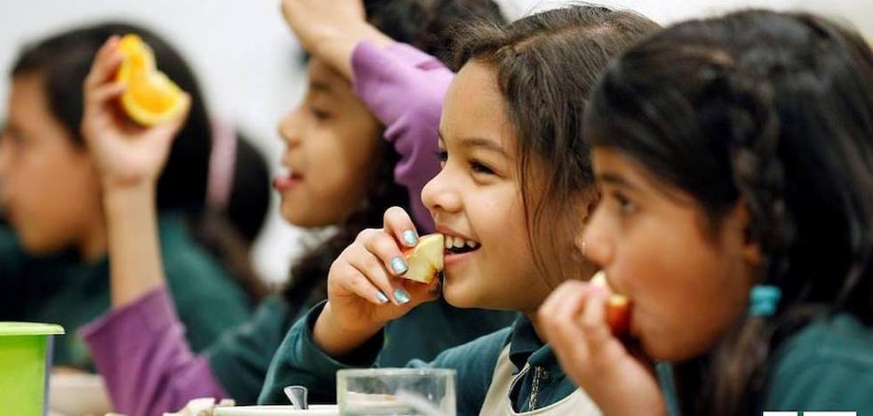 ¿Cómo podemos prevenir las intoxicaciones alimentarias?