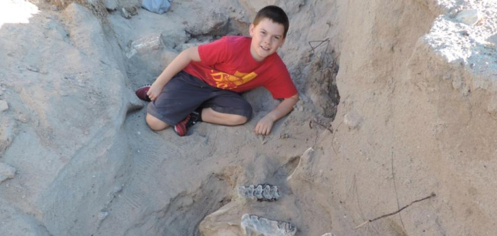 Un niño de 9 años descubre un fósil de 1,2 millones de años durante una excursión