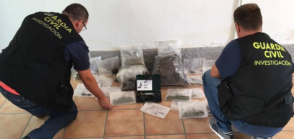 Desmantelan un invernadero de marihuana en La Malahá
